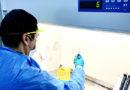 UCN cuenta con laboratorio de bioseguridad nivel 3 para analizar test de COVID-19 en Coquimbo